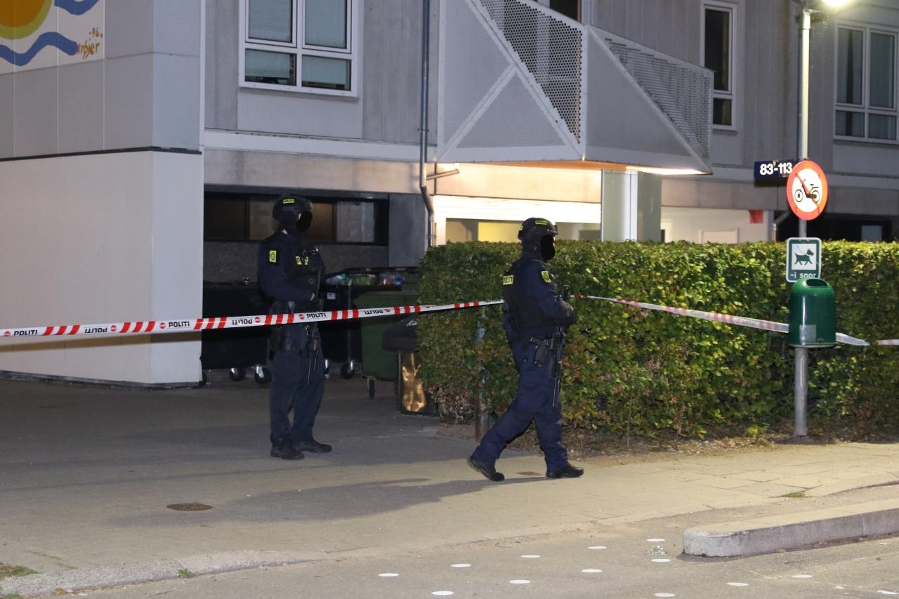 To anholdt efter skudepisode i Ladegaardsparken