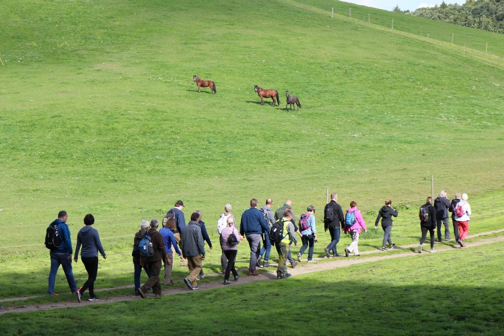 Man kan komme ud og vandre i mamutternes fodspor. Foto: Observatoriet i Brorfelde.
