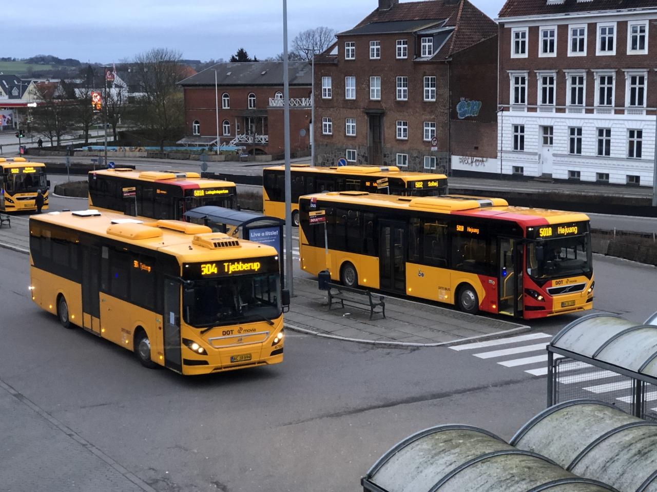 Busser. Foto: Rolf Larsen