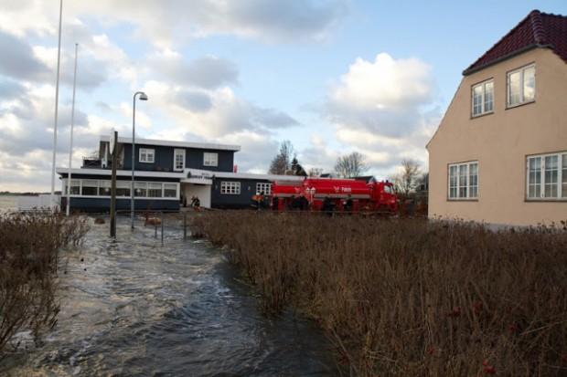 De fremmødte på havnen i Hørby var enige om, at de aldrig havde set noget lignende. Foto: Michael Johannessen.