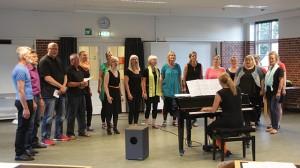 Visible Voices under en koncert på Kulturkasernen i 2014. Foto: Rolf Larsen.